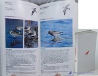 Western Birds: An Audubon Handbook