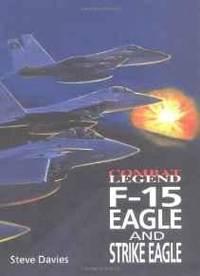 F-15 EAGLE & STRIKE EAGLE