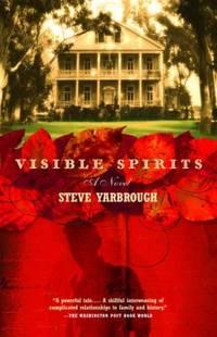 Visible Spirits : A Novel