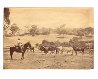 A group of four nineteenth-century photographs featuring Thomas Walker Higgins, a pioneer of Currency Creek and Middleton, about 80 kilometres south of Adelaide