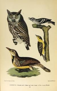 American Ornithology; or the Natural History of The Birds of the United States. Volume one ONLY (of three)