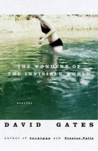 The Wonders of the Invisible World: Stories