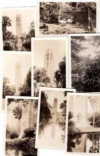 ca 1930 Eight Original Photographs of Bok (Singing)Tower, Lakes Wales, Florida - Carillon, Palm Trees, Grounds and Flamingos