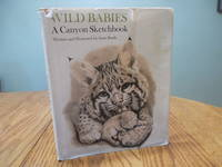 image of Wild Babies: A Canyon Sketchbook