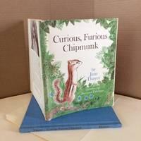 Curious, Furious Chipmunk