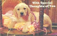 Dog Card - With Special Thoughts of You, used Postcard
