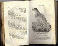 History of British Birds, First Edition, 1797