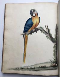 Portraits of Rare and Curious Birds,