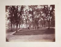 [Harvard University Class Album, Class of 1872]
