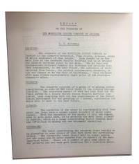 Report on the Property of the Montizona Copper Company of Arizona