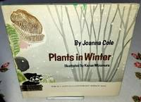 image of PLANTS IN WINTER