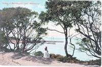 Scene at Mornington, near Melbourne. Postcard Australian.