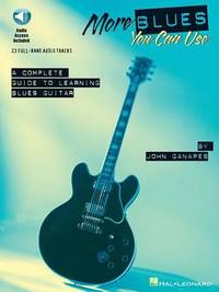 More Blues You Can Use : A Complete Guide to Learning Blues Guitar