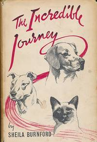 The Incredible Journey by  Carl (illustrator))  Sheila(Burger - Hardcover - Reprint - 1961 - from Barter Books Ltd and Biblio.com