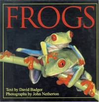 image of Frogs