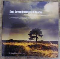 East Devon Pebblebed Heaths. 240 million years in the making