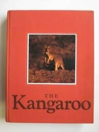 image of The kangaroo
