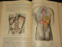 Text-Book of Anatomy Section IV