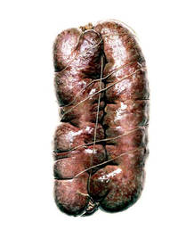 Salami #6 (Signed Limited Edition Print)