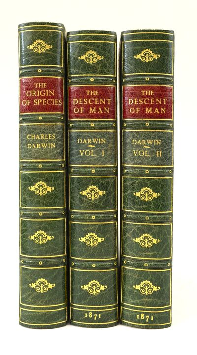 THE DESCENT OF MAN.  [with]  ON THE...