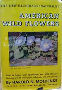 American Wildflowers