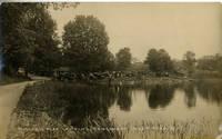 image of Miller's Boat Landing, Congamond Lakes, Massachusetts Real-Photo Postcard 93