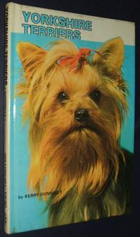 image of Yorkshire Terriers