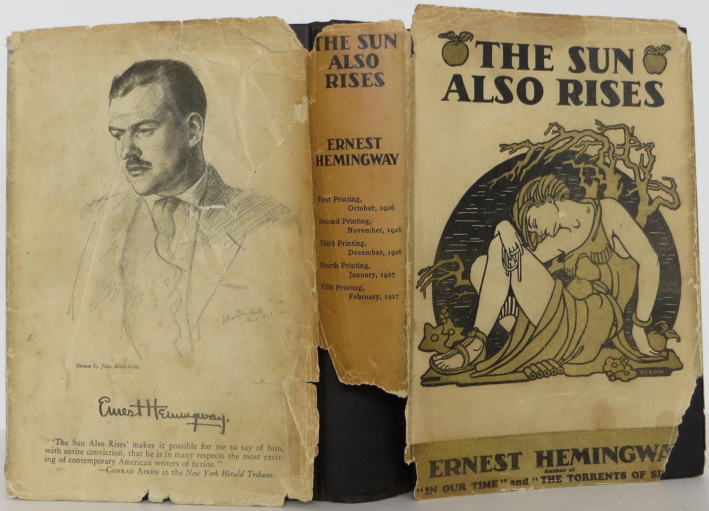 sun also rises ernest hemingway essays F scott fitzgerald's the great gatsby and ernest hemingway's the sun also rises both define the culture of the 1920s through the  more ernest hemingway essays.