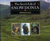 The Secret Life of Snowdonia