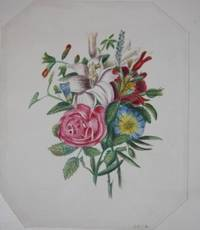 Album with Twenty-Two Watercolors, Mostly Botanical, Twelve Other Original Drawings and a Few Prints and Poems