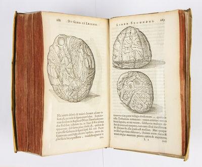 Gemmarum et Lapidum Historia. Quam...