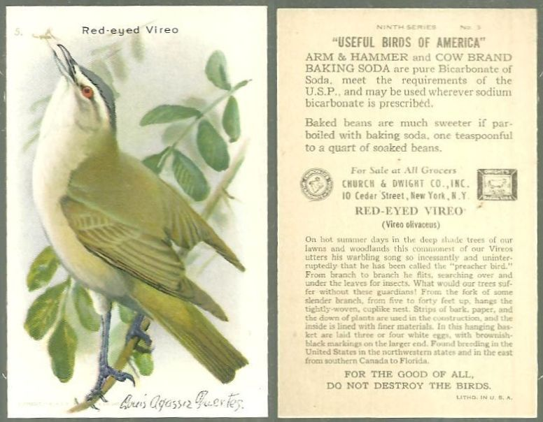 VICTORIAN TRADE CARD FOR ARM AND HAMMER BAKING SODA, USEFUL BIRDS OF AMERICA SERIES, THE RED-EYED VIREO, Advertisement