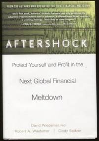 Aftershock  Protect Yourself and Profit in the Next Global Financial  Meltdown