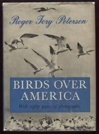 Birds Over America
