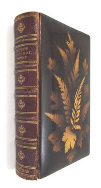 The Poetical Works of Sir Walter Scott  with Memoir  of the Author