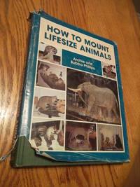 image of How to Mount Lifesize Animals