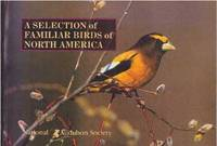 A SELECTION OF FAMILIAR BIRDS OF NORTH AMERICA