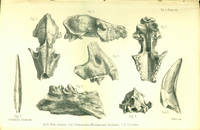 Palaeontological memoirs and notes of the late Hugh Falconer