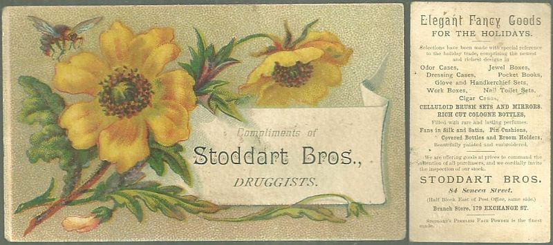 VICTORIAN TRADE CARD FOR STODDART BROS. DRUGGISTS WITH FLOWERS, Advertisement