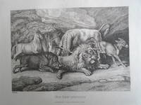 A NEW WORK OF ANIMALS: PRINCIPALLY DESIGNED FROM THE FABLES OF AESOP, GAY, AND PHAEDRUS : CONTAINING ONE HUNDRED PLATES DRAWN FROM THE LIFE AND ETCHED BY SAMUEL HOWITT
