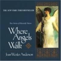 Where Angels Walk : True Stories of Heavenly Visitors
