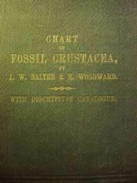 Chart of Fossil Crustacea complete with Descriptive Catalogue 1865