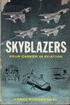 Skyblazers Your Career In Aviation