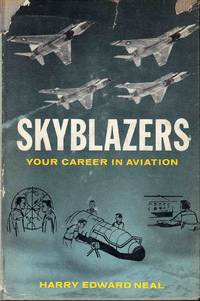 image of Skyblazers Your Career In Aviation
