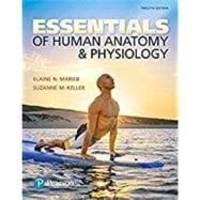 image of Essentials of Human Anatomy & Physiology (NASTA EDITION)