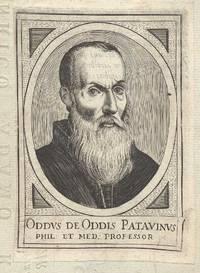 ODDUS DE ODDIS PATAVINUS.