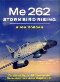 image of Me 262; Stormbird Rising
