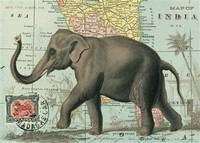 Cavallini & Co. Vintage Elephant Decorative Decoupage Poster Wrapping Paper Sheet