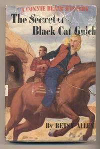 The Secret of Black Cat Gulch (A Connie Blair Mystery)