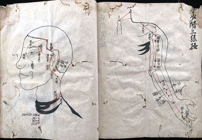 TEACHING ACUPUNCTURE IN THE 17TH CENTURY